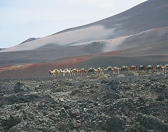 Jizni putovani po vulkanech