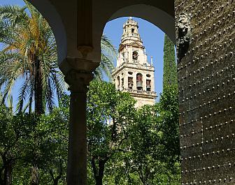 Nadvori pomerancovniku Cordoba patio naranjos