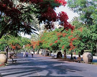 Ulice v Santa Cruz