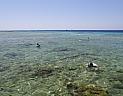 Ostrov Tiran