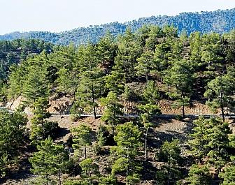 Pohoří Troodos a klášter Kykkos