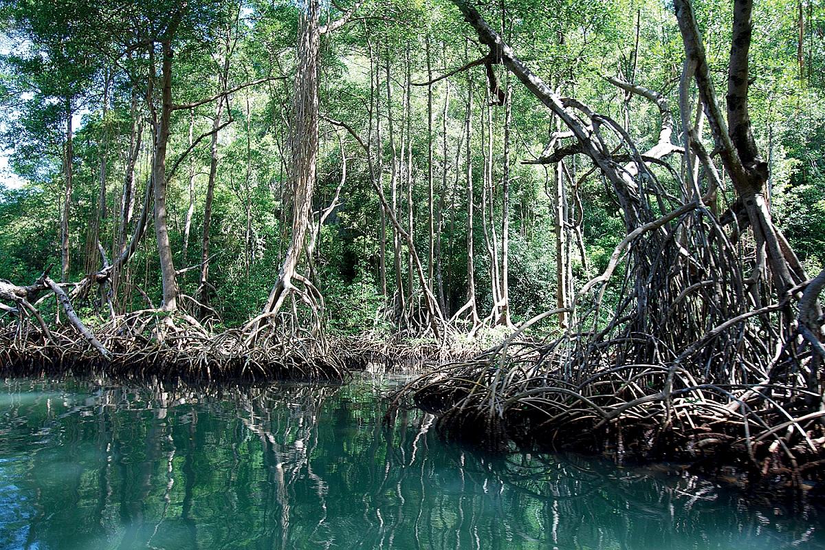 Národní park Los Haitises