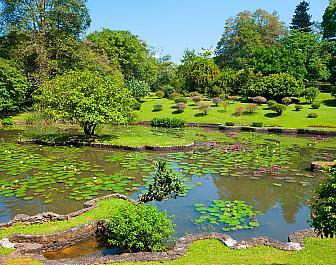 Královská botanická zahrada Peradeniya v Kandy