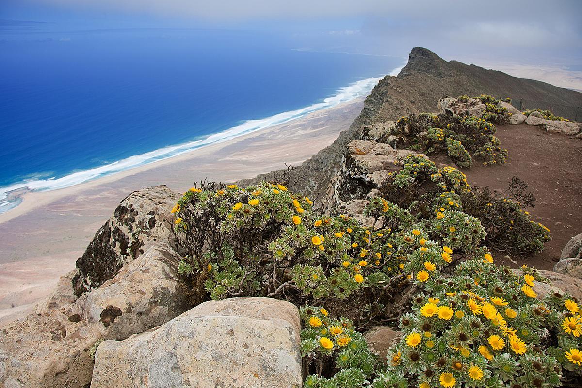 Pohled na pláž Playa Barlovento na Fuerteventuře z vrcholu Pico de Zarza