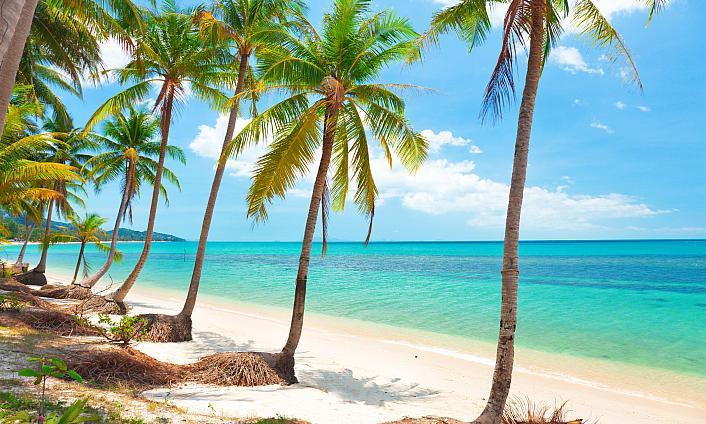 Lamai Beach - Dovolená 2019 - CK FISCHER
