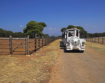 Brijuni, turistický vláček
