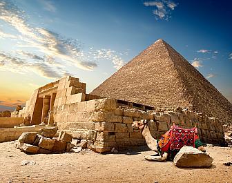Pyramidy v Gíze, velbloud