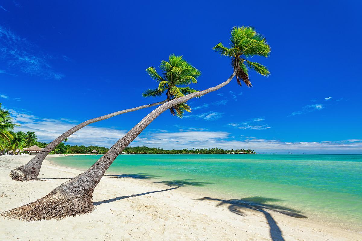 Kdo přežije: Fidži (10). < Zobrazit všechny.