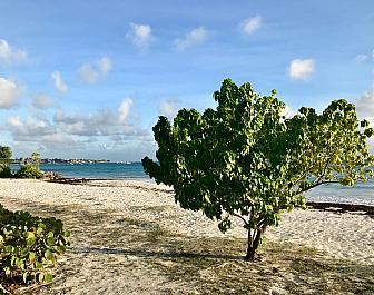 Welches Beach